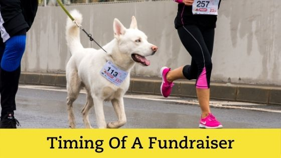 When is the best time to fundraise